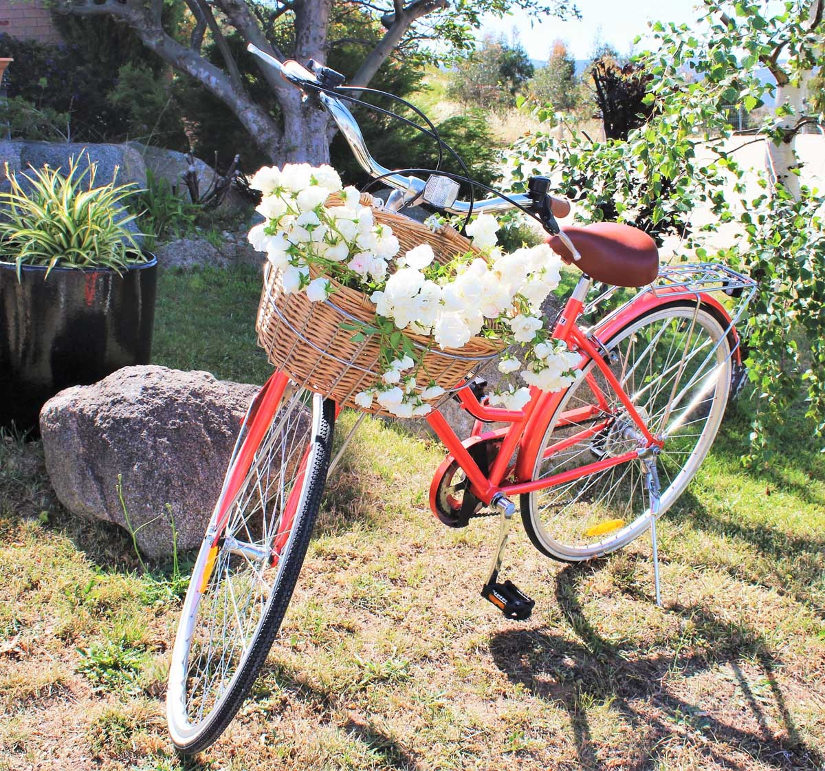 Ski-Inn-Jindabyne-Accommdation-Cafe-restaurant-bar- Free Bike Hire 03